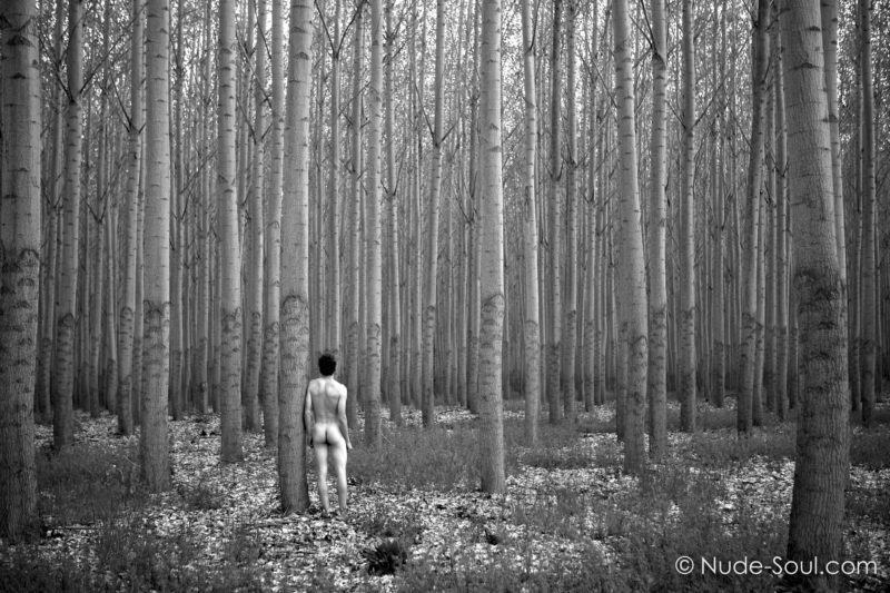 Nude in the Woods -Nature Au Natural